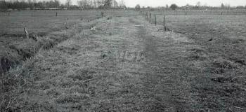 archimedesstraat-oud-otter_1038