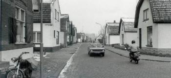 bartelsweg2kl_1038