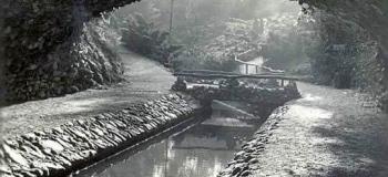 berg-en-bos-1959-1_1038