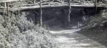 berg-en-bos-1959-2_1038