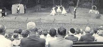 berg-en-bos-balletuitvoering-openluchttheatert_1038