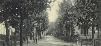 bosweg-06_1038