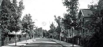 gardenierslaan-vanaf-de-sumatralaan-1957kl_1038