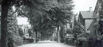gardenierslan-vanaf-kruispunt-met-sumatralaank_1038