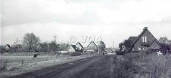 kayersdijk-in-noordelijke-richting-1954_1038