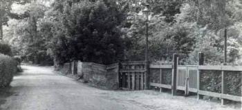 maduralaan-in-westelijke-richting-1953kl_1038