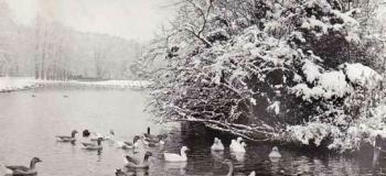 marialust-in-de-winter_1038