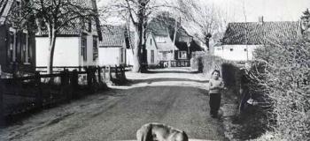 nieuwe-enkweg-nu-aquamarijnstraat-1961_1038