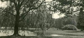 oranjepark-1928_1038