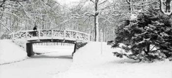 prinsenpark-1962-foto-j.g.-van-ommen_1038