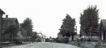 ruysdaellaan-in-noordelijke-richting-1956-foto_1038