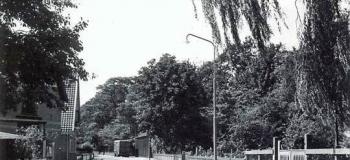 maduralaan-vanaf-de-sprengenweg-1954kl_1038