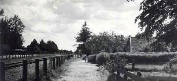 koning-lodewijklaan-bij-sterrenlaan-1955kl_1038