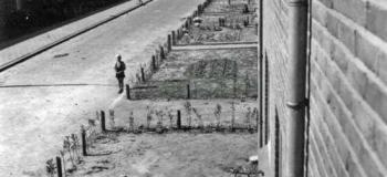 scanimage011jaar1951osta
