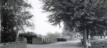 waterloseweg-nu-laan-van-orden-1959_1920
