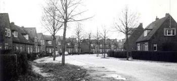 wolweg-in-noordelijke-richting-1963kl_1038