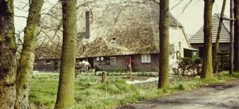 woudhuis-boerderij_1038